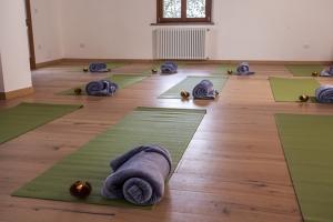 sala yoga rid